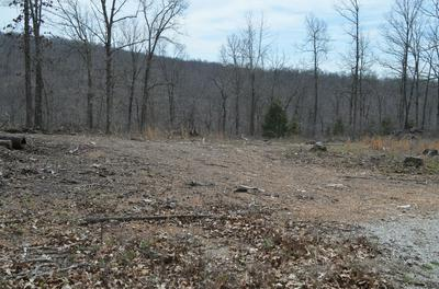 LOT 7 SCENIC HEIGHTS, Bruner, MO 65620 - Photo 2