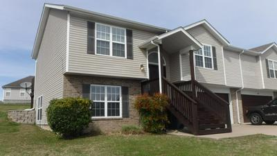 287 FOREST LN, Branson, MO 65616 - Photo 1