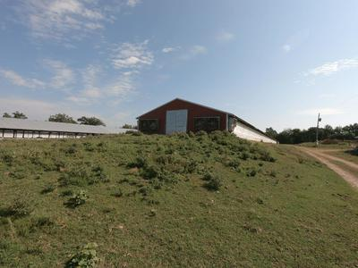 10778 ELMS RD, Summers, AR 72769 - Photo 2