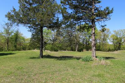350 COUNTY ROAD 600, Gassville, AR 72635 - Photo 2