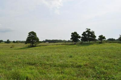 TRACT-9 SOUTH FARM ROAD 115, Brookline, MO 65619 - Photo 1