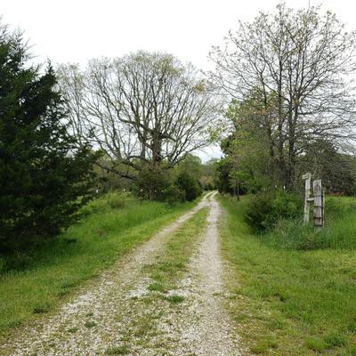 6914 COON CREEK RD, Hartville, MO 65667 - Photo 2