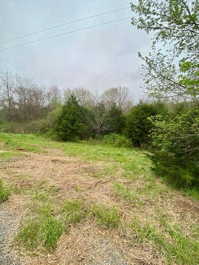 TBD RASPBERRY RD LOT 84, Highlandville, MO 65669 - Photo 2