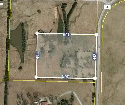 6181 E STATE HIGHWAY A, Strafford, MO 65757 - Photo 1