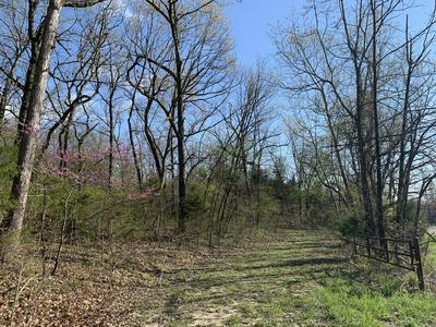 000 STATE HIGHWAY V, Seymour, MO 65746 - Photo 1
