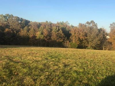 TBD STU CIRCLE, Highlandville, MO 65669 - Photo 2