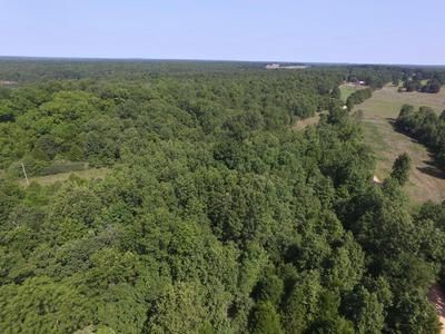 0000 COUNTY ROAD 8870, West Plains, MO 65775 - Photo 1