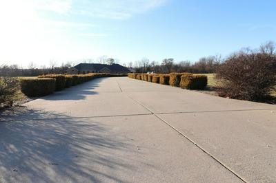 295 OLD TOWN RD, BILLINGS, MO 65610 - Photo 2