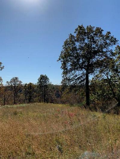 LOT 25-A PALAMINO DR., Highlandville, MO 65669 - Photo 1