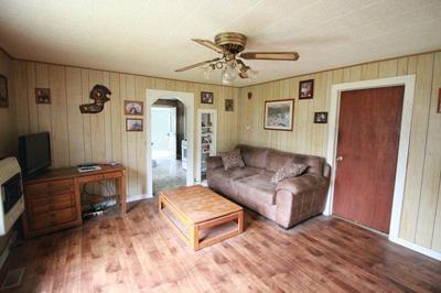 1620 ROARK AVE, Seneca, MO 64865 - Photo 2