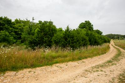 17 ROLLING MEADOWS SUBDIVISION #1, Golden, MO 65658 - Photo 2