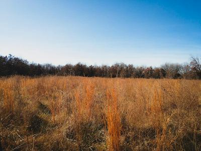 TBD HIGHWAY 142, Bakersfield, MO 65609 - Photo 2