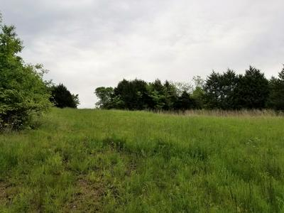TBD STTE HWY BB, Willard, MO 65781 - Photo 2