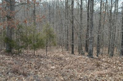 145 LOOKOUT PT, Bruner, MO 65620 - Photo 2