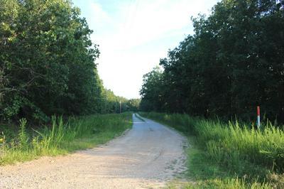 1 TIMBER CIR, Tunas, MO 65764 - Photo 1