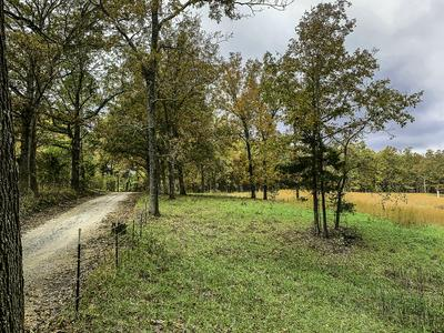 TBD COUNTY ROAD 530, Gainesville, MO 65655 - Photo 2