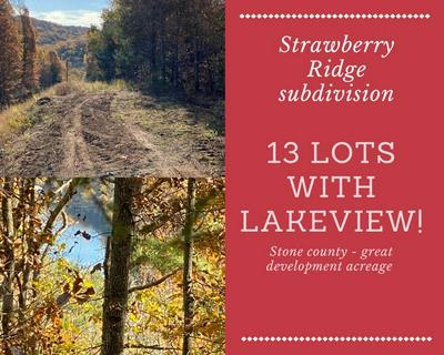 LOT 1 - 13 STRAWBERRY RIDGE SUBDIVISION, Lampe, MO 65681 - Photo 1
