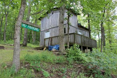000 STATE HIGHWAY V, Seymour, MO 65746 - Photo 2