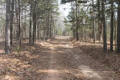 000 COUNTY ROAD 337, Ava, MO 65608 - Photo 1