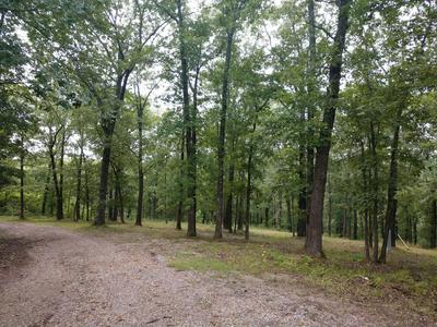 14.4 ACRES WARNER ROAD, Crane, MO 65633 - Photo 2