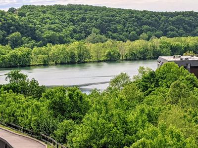 150 SUNKEN FOREST DR BLDG 8-215, Forsyth, MO 65653 - Photo 2