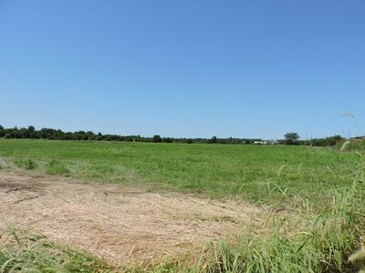 000 FARM ROAD 105, Willard, MO 65781 - Photo 2