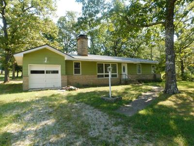 600A N HIGHWAY 17, Summersville, MO 65571 - Photo 1
