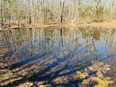 4075 ROBERTSON RD, Grovespring, MO 65662 - Photo 1