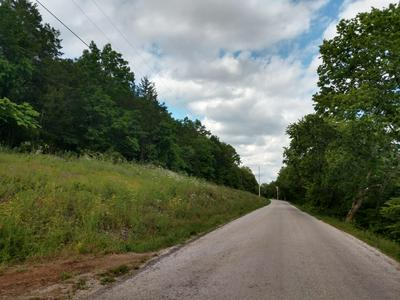 18.95 ACRE WARNER RD. JAMES RIVER FTG, Crane, MO 65633 - Photo 2