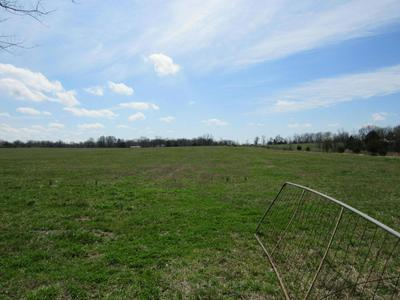 TBD TWO RIVERS ROAD, Highlandville, MO 65669 - Photo 2