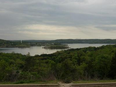 TBD FLAT ROCK ROAD, Hollister, MO 65672 - Photo 1