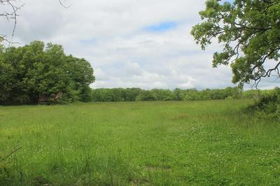 00 STATE HWY W HIGHWAY, Elkland, MO 65644 - Photo 2