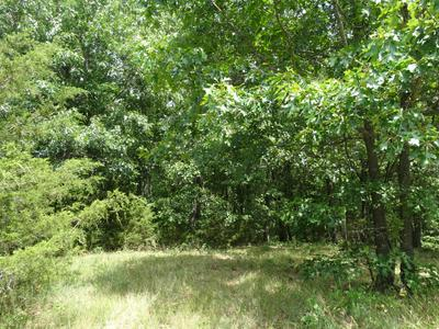 20.22 AC LINE RIDGE ROAD, Lampe, MO 65681 - Photo 2