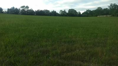 11815 STATE HWY 76, Ava, MO 65608 - Photo 1