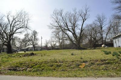 203 N FLINT AVE, BOLIVAR, MO 65613 - Photo 1