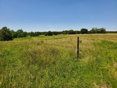 TBD LITTLE VINE ROAD, Grovespring, MO 65662 - Photo 1