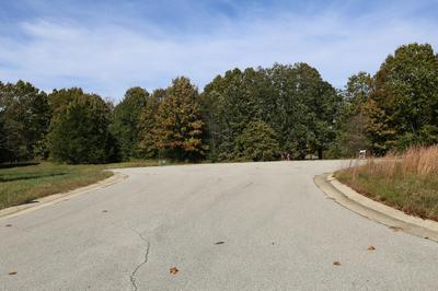 000 WILD TURKEY ROAD # BLOCK 1 LOT 17, West Plains, MO 65775 - Photo 2