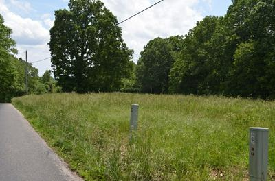 LOT 1-C SOUTH MARSHFIELD ROAD, Bruner, MO 65620 - Photo 2