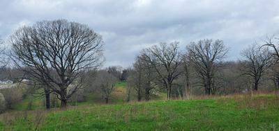 309 LAWRENCE, Thayer, MO 65791 - Photo 1