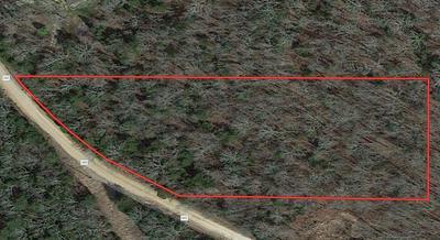 000 COUNTY ROAD 342, Caulfield, MO 65626 - Photo 1