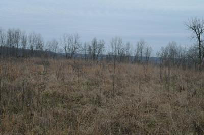 LOT 13 LOOKOUT POINT, Bruner, MO 65620 - Photo 1