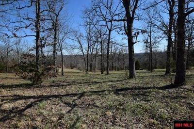 000 MARION COUNTY 135 LOTS 74 & 75, Oakland, AR 72660 - Photo 2