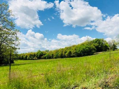 000 COUNTY ROAD 593, Caulfield, MO 65626 - Photo 2