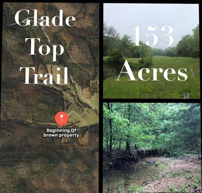 153 ACRES GLADE TOP TRAIL, Ava, MO 65608 - Photo 1