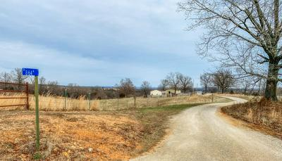 145 COUNTY ROAD 864A, Thornfield, MO 65762 - Photo 2