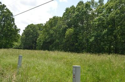 LOT 1-C SOUTH MARSHFIELD ROAD, Bruner, MO 65620 - Photo 1