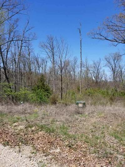18560 DOUGLAS CIR, Phillipsburg, MO 65722 - Photo 1