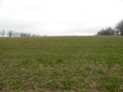 TBD-TR12 SOUTH FARM RD. 115, Brookline, MO 65619 - Photo 1