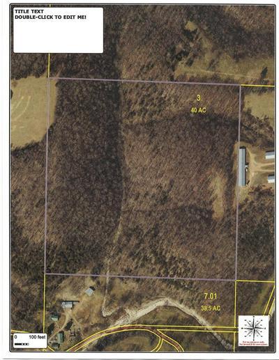 TBD FARM RD 1075, Washburn, MO 65772 - Photo 1