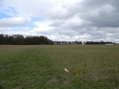 00 EAST FARM RD. 104, Strafford, MO 65757 - Photo 2